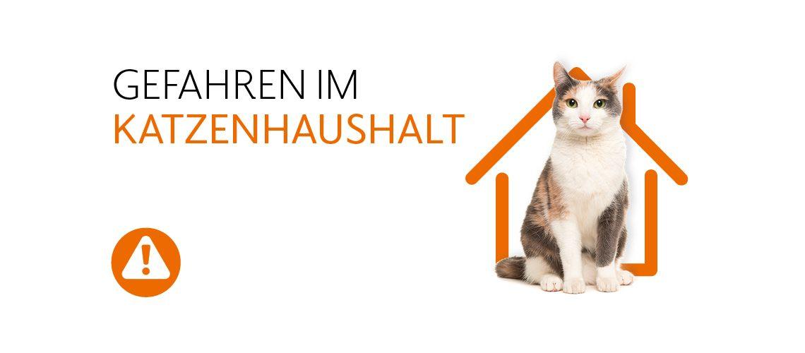 TAV-20-001_Katzenhaushalt_Website